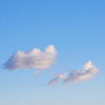 La fiaba del seme e la nuvola