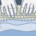 Atlantide e i social network