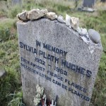 Un giorno per caso, Sylvia Plath