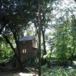 Memorie di Villa Strohl-fern